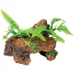 MA Ntrl Malaysian Drftwd w/Plants,Sm-V