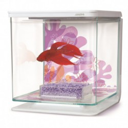 Marina Betta Kit Flower Theme