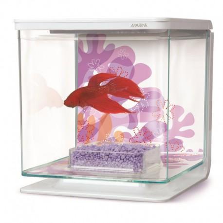 Aquarium équipé MA pour betta, fleurs