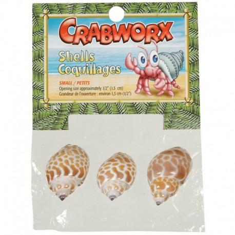 Coquillages Crabworx, petits, 3-V