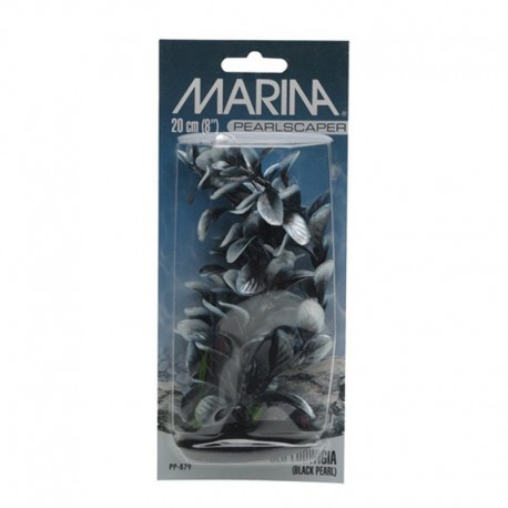 Marina Prl.Sc. Red Ludwigia,Nr/Bl 20Cm-V