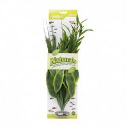 MA Ntl Grn Dracena Silk Plant, XL