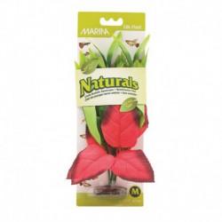 Plante soie Pont. rouge/vert Nat MA M
