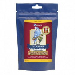 Hagen Budgie Oat Treat, 200g