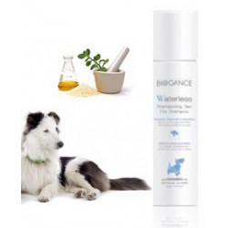 Shampooing sec Waterless chien150ml