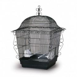 220B COCKATIEL NOIRE 18 x18 x25 PH Cages Equipées