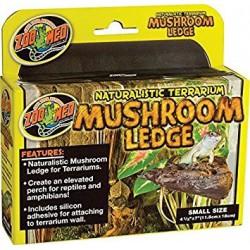 Mushroom LedgeSM