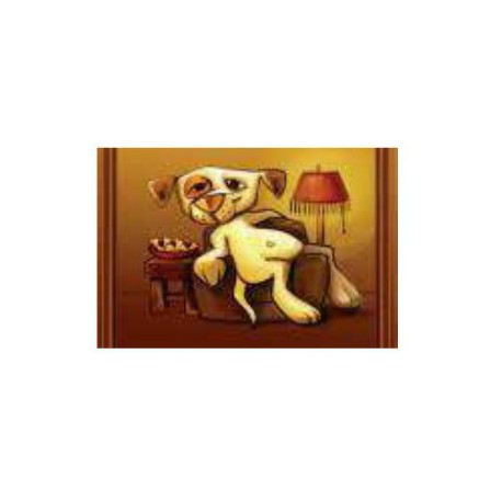 COMPANION STYLE DOG PLACE MAT SMALL COUCH DOG