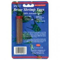 OS Brine shrimp eggs 21 oz
