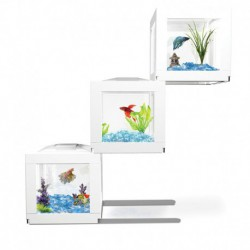 Deco Cube - 3 Pack SIMALEX Aquariums Kit