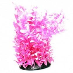UT Plant White Tip Ludwigia 12