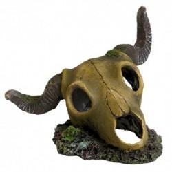 UT Ram Skull