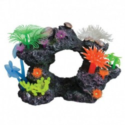 UT Reef Scene Small D