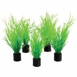 UT 5Pk Mini Plant Bog Grass