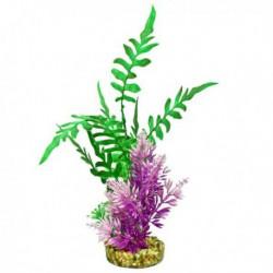 Ruppie maritime Fiesta Aqua Garden Cluster, vert et violet