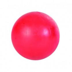 4 ½  BALLE DE PLASTIQUE DURE
