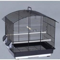 BEAKS! Parakeet/Cockatiel/Love Bird Set /4 21x16x21in