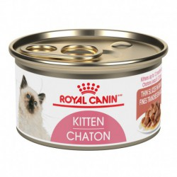 Kitten Instinctive / Chaton Instinctif THIN SLICES IN GRAVY