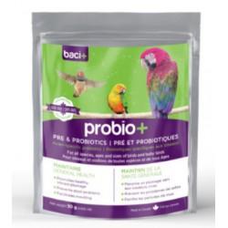 Probio+ pour oiseau 50gr