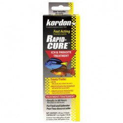 KORDON Rapid Cure 4 oz