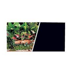 Arr.-plan rév. MA, plantes/noir, 25 pi-V