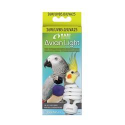Ampoule Hari pour oiseaux, 25 W