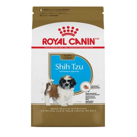 Shih Tzu Puppy / Shih Tzu Chiot 2 5 lbs 1 1 kg