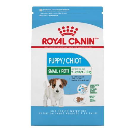 MINI Puppy/Chiot2.5 lb