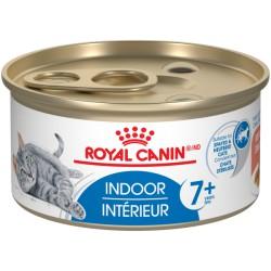 Indoor 7+ / Intrérieur 7+     Morcels in sauce / Émincé en s