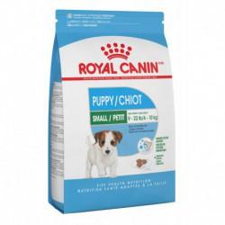 SMALL Puppy / PETIT Chiot 13 lb 5.9 kg