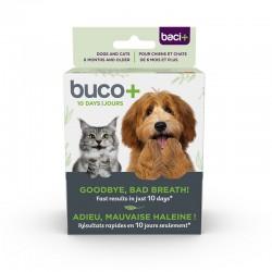 BACI+ BUCCO+ 10 JOURS CHAT/CHIEN