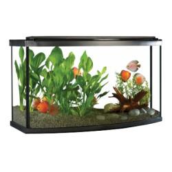 Aq équipé FL 26 dev arrondi éclair DEL FLUVAL Aquariums Kit