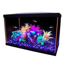 Aquarium équipé iGlo Marina, 38L (10gal US)  Aquariums Kit
