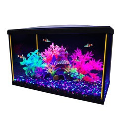 Aquarium équipé iGlo Marina, 19L (5gal US)  Aquariums Kit