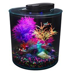 Aquarium équipé iGlo Marina 360°, 10L (2,65gal U  Aquariums Kit