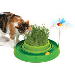 CA Play - Grass, Bee, and Ball - Green