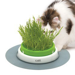 Jardinière d¿herbe Senses Catit 2.0