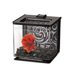 MA 2.5L EZ-Care Betta Kit - Black