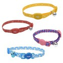 Leashes And Collars