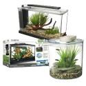 Aquariums Équipés